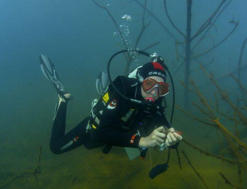 Junge Unterwasserforscher